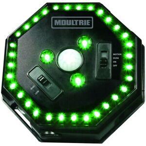 Moultrie Feeder Hog Light Adjustable Green LED Boar Hunting MFA-12651