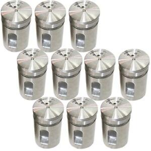 10x Gewürzstreuer-Set Streuer edle Aromabehälter aus Glas & Edelstahl 8,5x5x5cm