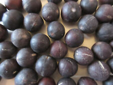 10 Graines Lumbang Coloris noir