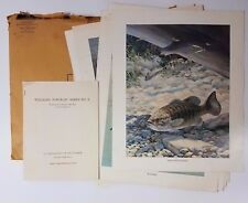 "Bob Hines Complete Set Of 10 Vintage Gamefish Prints 14"" x 17"" Full Color"