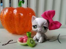 Littlest Pet Shop European Grey White Longhair Angora Cat #954 Star Eyes Lps