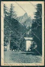 Sondrio Masino cartolina QQ7597