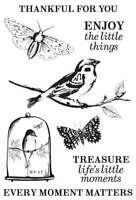 """Anthology Clear Stamps 6""""X4""""   883416363286"""