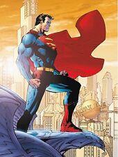DC Comics: Metropolis 2 Fertig-Bild 60x80 Wandbild Superman