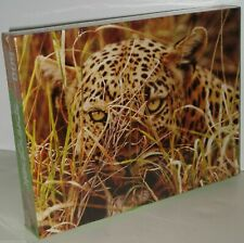 Springbok Leopard Eyes Jigsaw Puzzle 500 Pieces NEW - Box Damaged