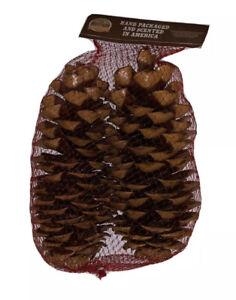 "Giant Sugar Pine Cone 2 Pack 11"" 12"" Cones Cinnamon Scented California Cali CA"