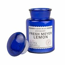 Paddywax Apothecary Collection Jar Candle, Fresh Meyer Lemon, 8 oz