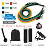 11 PCS Fitness Resistance Bands Set Home Gym Exercise Tube workout Band Training