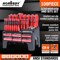 100Pc Magnetic Screwdiver & Security Bits Set Plastic Rack Phillips Slotted Hex