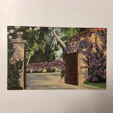 Purple Bouganvillea Florida 4567 Posted Vintage Linen Postcard