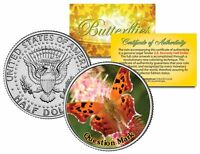QUESTION MARK BUTTERFLY JFK Kennedy Half Dollar US Colorized Coin