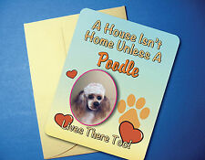 """A House Isn't Home"" Poodle Greeting Card / Blank Note Card - sku# AH-06"