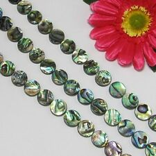 Abalone Coquille 14mm Ronde Perles 1 Fil