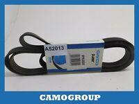 Belt Service V-Ribbed Belt 2525MM Dayco For AUDI A8 Q7 Volkswagen Touareg