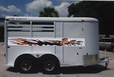 Mustang Pony running Flame Stripe Stripes Decals Decal Horse trailer