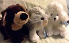 Lot Of 3 Webkinz By Ganz Nwt Poodle Schnauzer Mocha Pup Hm014 Hm159 Hm348 Ganz