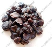 Parijata Seeds Harshringar Nyctanthes Arbor-Tristis Coral Jasmine Fruits Seed