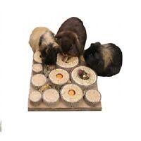 SMALL ANIMAL TOY MAZE PUZZLE BOREDOM BREAKER PET TREATS RABBIT GUINEAPIG HAMSTER