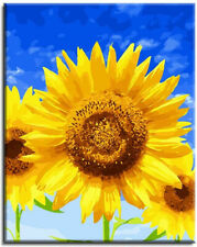 Various Sunflower Series Paint by Numbers for Adults Kids Beginners Easy on 16
