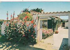 ILE DE RE LE BOIS 134 une jolie maison fleurie timbrée 1965