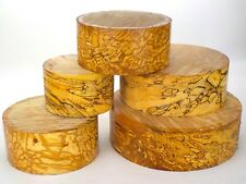 Thick Spalted Beech wood turning bowl blanks. 90mm thick.