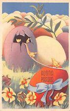 B95033 egg chick flower  buona pasqua easter   italy