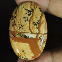 BEST OFFER 100% NATURAL PICTURE JASPER OVAL BRILLIANT CABOCHON LOOSE GEMSTONE