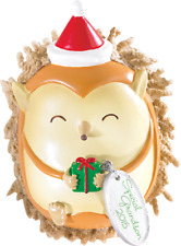 Carlton Heirloom Ornament 2015 Grandson - Special Grandson Hedgehog - #Cxor016H