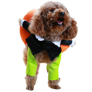 New Funny Pumpkin Pets Dog Cat Cosplay Halloween Clothes,Party ,Standing Outfit
