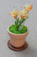 1:12 Orange & Yellow Orchid In A Pot Dolls House Miniature Flower Accessory 5