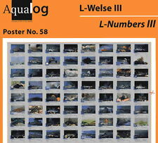 AQUALOG Poster The Most Beautiful L-Numbers, LAMINATED