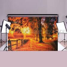 9x6FT Fall Scenic Vinyl Backdrop Studio Photography Photo Prop Background Decor