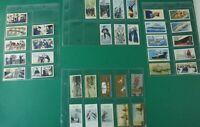 Konvolut Sammelbilder Zigarettenbilder Automatenbilder Maritime Motive Alb-543