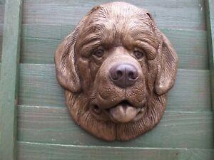 BIG  BRONZED STONE NEWFOUNDLAND DOG  DOGS HEAD GARDEN  WALL SCULPTURE