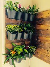 DIG Vertical Garden Kit - Wall Mount Flower / herb planter w/ Drip Irrigation