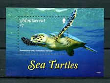 Montserrat 2016 MNH Sea Turtles 1v S/S Hawksbill Sea Turtle Reptiles Stamps