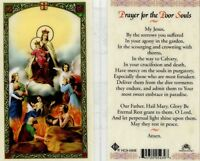 Prayer Card for Poor Souls Laminated Jesus By the Sorrows You Suffered HC9-090E