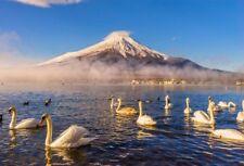Mount Fuji Swan Lake Photo Backdrop 7x5ft Japan Landscape Background Studio Prop