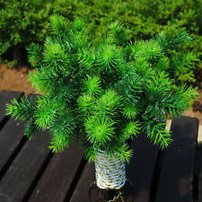 1pc Plastic Fake Green Pine Tree Mini Artificial Plant Tree Home Office Decors,P