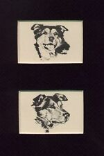 "Siberian Husky ""Head Set"" - Vintage Dog Print - 1932 D. Thorne"