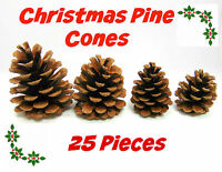 25 Pcs Quality Natural Pine Cones Florists Crafts Used to Decorate Xmas Wreaths