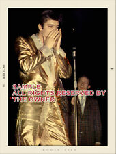 ELVIS PRESLEY 8x10 IN GOLD STAGE OUTFIT  SNAPSHOT FORMAT  NEW