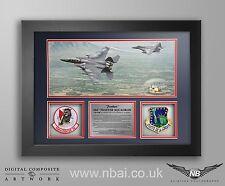 494th FS Patch set FRAME PRESENTATION, RAF Lakenheath.