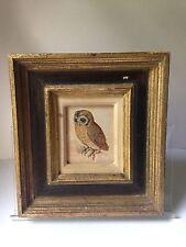 Vintage Albrecht Durer No. 1508 Young LITTLE OWL Print Framed Animal Art