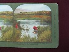 Stereoview T Ingersoll Holy Land Series The Main Source Of The Jordan River (O)