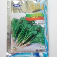 1110 Seed Cilantro Coriander Herb Vegetables Spices Thailand High Yieldn Fruitf