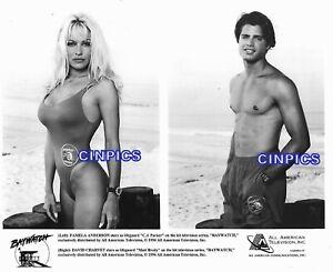 PAMELA ANDERSON & DAVID CHARVET PIN-UP BAYWATCH TV VINTAGE ORIGINAL  8X10 PHOTO