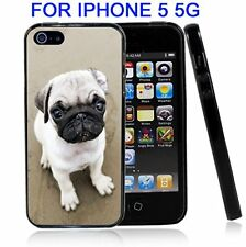 Pug Close up For Iphone 5 5G Case Cover
