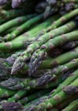 Organic UC 157 F2 Asparagus 25+Seeds OP Hybrid early production non-gmo