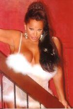 VANESSA DEL RIO: 1  FotoSET (16 Fotos 13x18cm)  des Hispano- Erotikstars, Busen